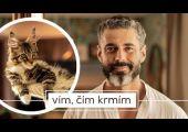 Vyšší kočičí – Království úspěšných mainek a Libora Šuly