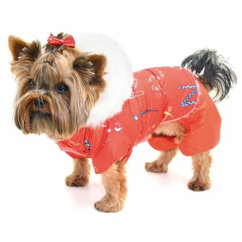 Недорогая и стильная одежда для собак оптом на все сезоны – Лори 887bd4ed5966a