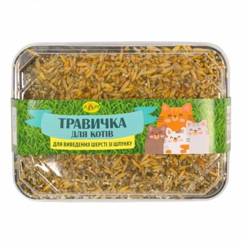 Травка для кошек (экономическая п / э упаковка + искусственная почва)
