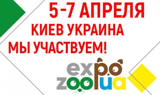 5-7 апреля, Киев